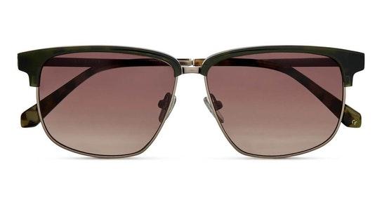 Leo TB 1630 (560) Sunglasses Brown / Green