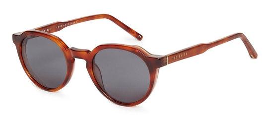 Kory TB 1631 Men's Sunglasses Green / Havana