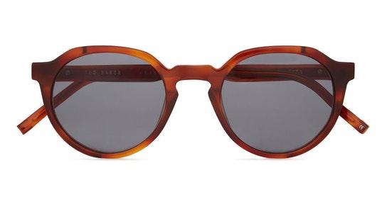 Kory TB 1631 (307) Sunglasses Green / Havana
