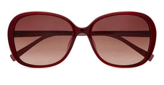 Rios TB 1603 (204) Sunglasses Brown / Burgundy