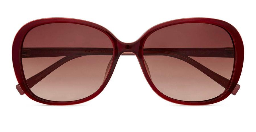 Ted Baker Rios TB 1603 (204) Sunglasses Brown / Burgundy
