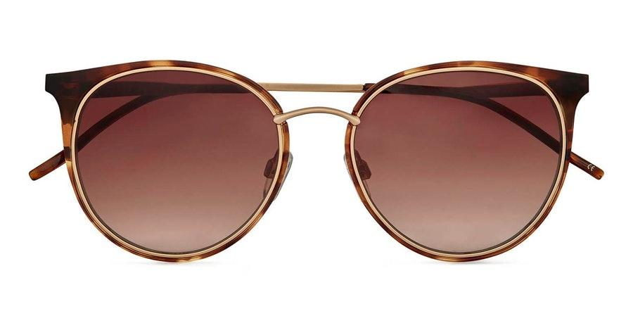 Ted Baker Neva TB 1610 (122) Sunglasses Brown / Gold 1