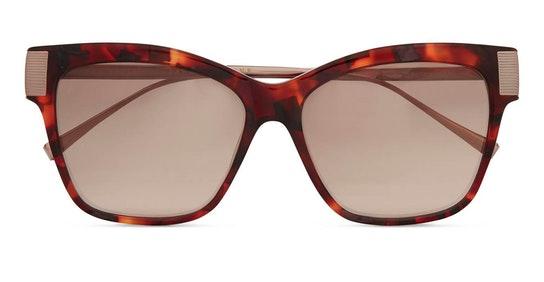 Christy TB 1615 (718) Sunglasses Brown / Purple