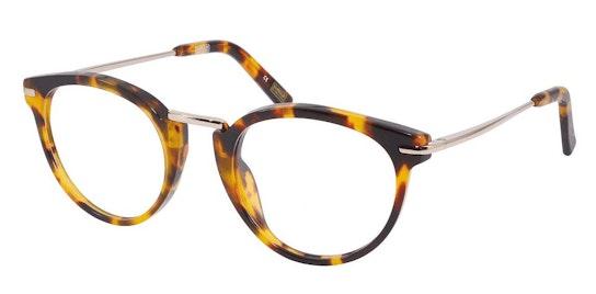 BI 032 Men's Glasses Transparent / Tortoise Shell