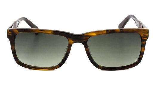 BS 071 (C1) Sunglasses Brown / Brown