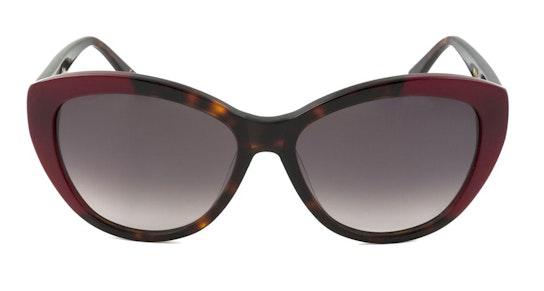 Sienna WHS020 (TOR) Sunglasses Brown / Tortoise Shell