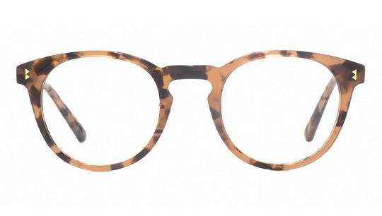 Siena WHS006 (C1) Glasses Transparent / Pink