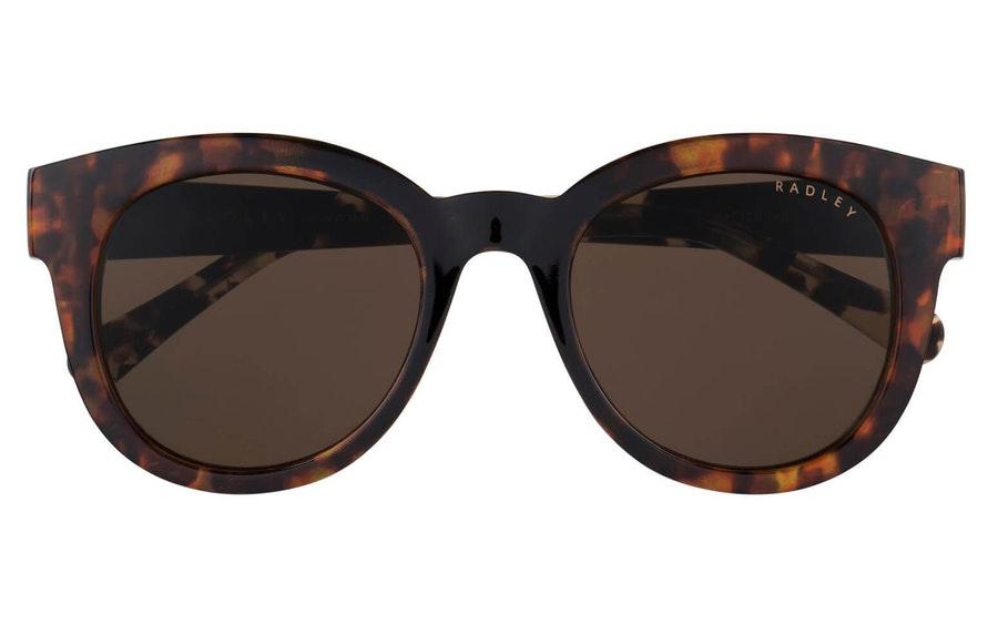 Radley Elspeth (102) Sunglasses Brown / Black
