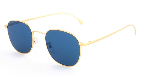 Arnold PS SP008V2 (C04) Sunglasses Blue / Gold