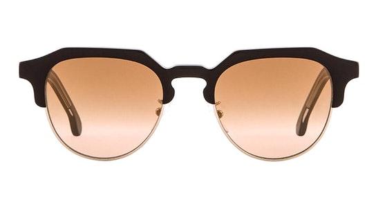 Barber PS SP017 (C01) Sunglasses Brown / Black