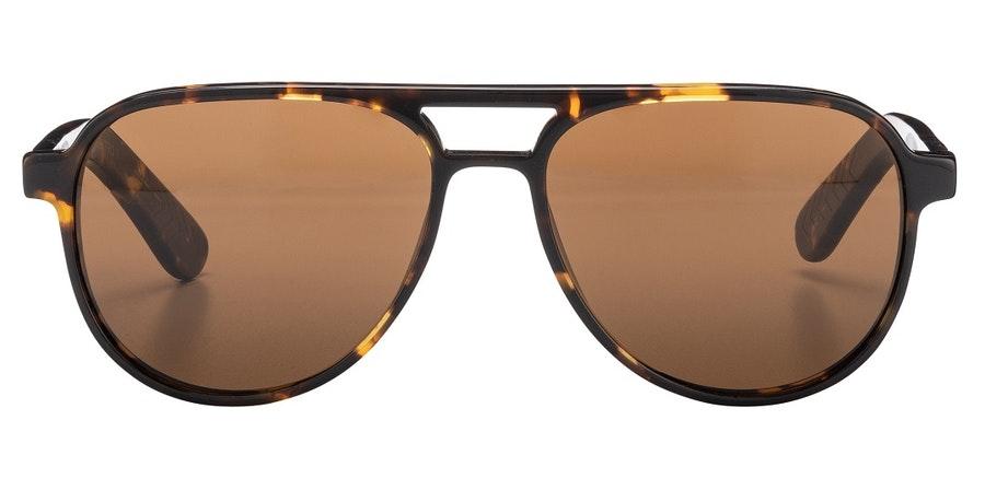 Spitfire Electro Men's Sunglasses Brown / Tortoise Shell