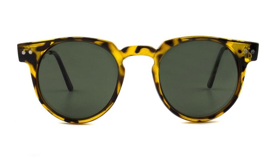 Spitfire Teddy Boy (Tan) Sunglasses Brown / Brown