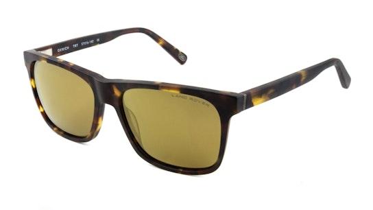 Oxwich (TRT) Sunglasses Bronze / Tortoise Shell