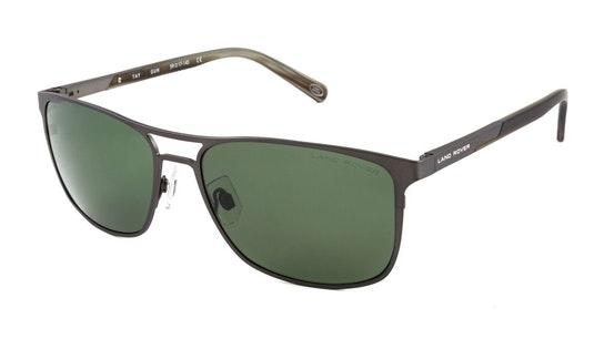 Tay (GUN) Sunglasses Grey / Grey