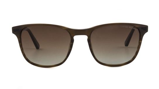 Itchen (SBR) Sunglasses Brown / Brown
