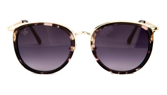 JP 18603 (DD) Sunglasses Violet / Gold