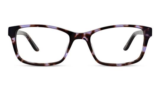 SP06 (C1) Glasses Transparent / Violet