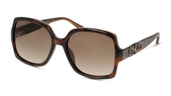 Sammi Women's Sunglasses Violet / Tortoise Shell