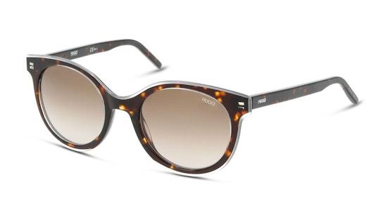 HG 1050/S Women's Sunglasses Brown / Havana