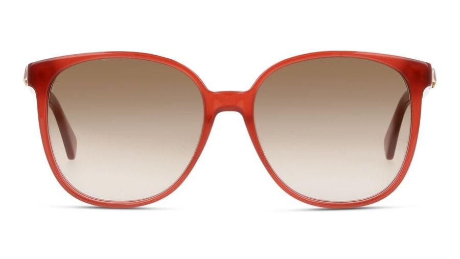 Kate Spade Alianna Women's Sunglasses Brown / Red