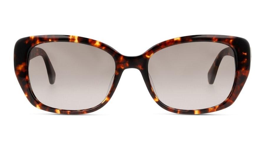 Kate Spade Kenzie Women's Sunglasses Brown / Havana