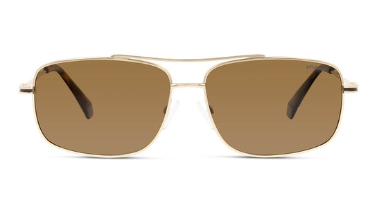 PLD 6107/S/X (J5G) Sunglasses Bronze / Gold