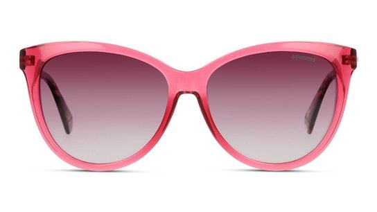 PLD 6104/S/X (VA4) Sunglasses Burgundy / Red