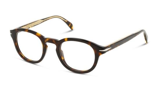 DB 7017 (086) Glasses Transparent / Tortoise Shell