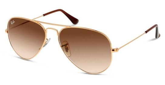 Aviator RB 3025 (001/51) Sunglasses Brown / Gold
