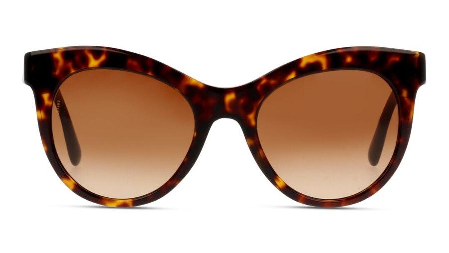 Dolce & Gabbana DG 4311 Women's Sunglasses Brown / Tortoise Shell