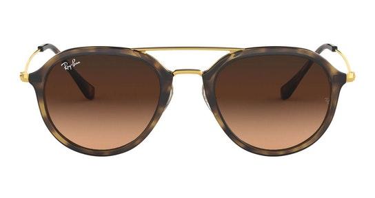 RB 4253 Men's Sunglasses Brown / Tortoise Shell