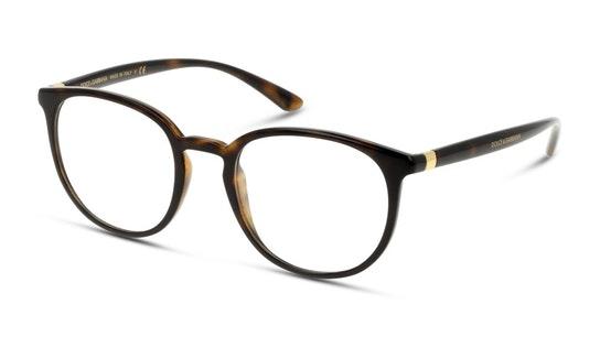 DG 5033 (502) Glasses Transparent / Tortoise Shell