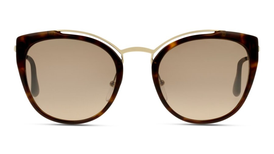 Prada PR 20US Women's Sunglasses Brown / Tortoise Shell