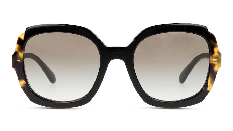 Prada PR 16US Women's Sunglasses Brown / Black