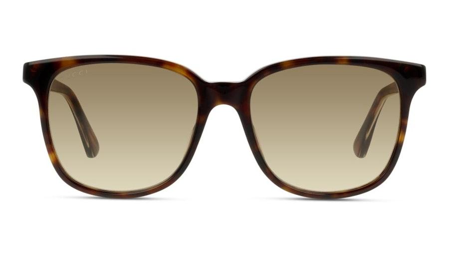 Gucci GG 0376S Women's Sunglasses Brown / Havana