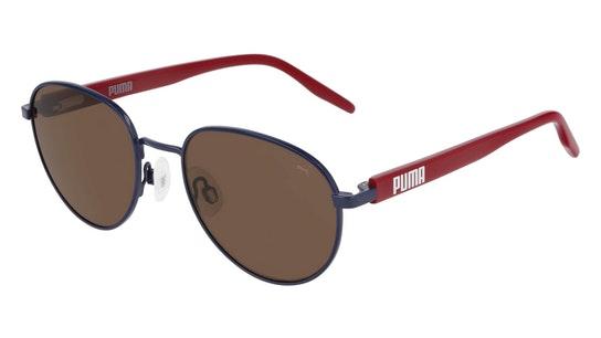 PJ 0041S (004) Children's Sunglasses Brown / Blue