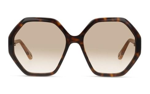 Esther CH 0008S Women's Sunglasses Brown / Tortoise Shell