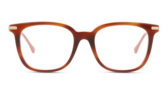 GG 0968O Women's Glasses Transparent / Tortoise Shell