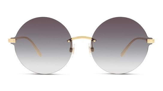 DG 2228 (02/8G) Sunglasses Grey / Gold