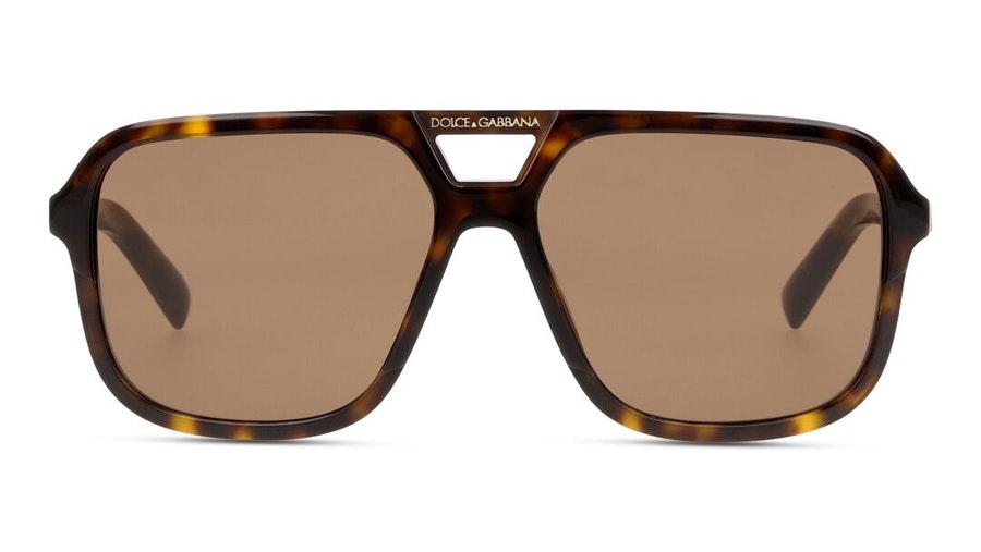 Dolce & Gabbana DG 4354 (502/73) Sunglasses Brown / Tortoise Shell