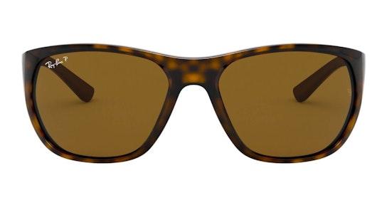RB 4307 Men's Sunglasses Brown / Tortoise Shell