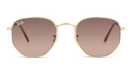 Hexagonal RB 3548N (Small) (912443) Sunglasses Brown / Gold