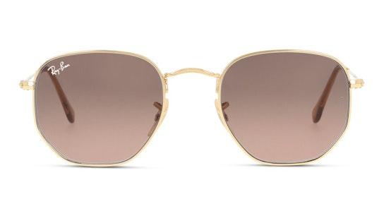 Hexagonal RB 3548N Unisex Sunglasses Dark Brown / Gold