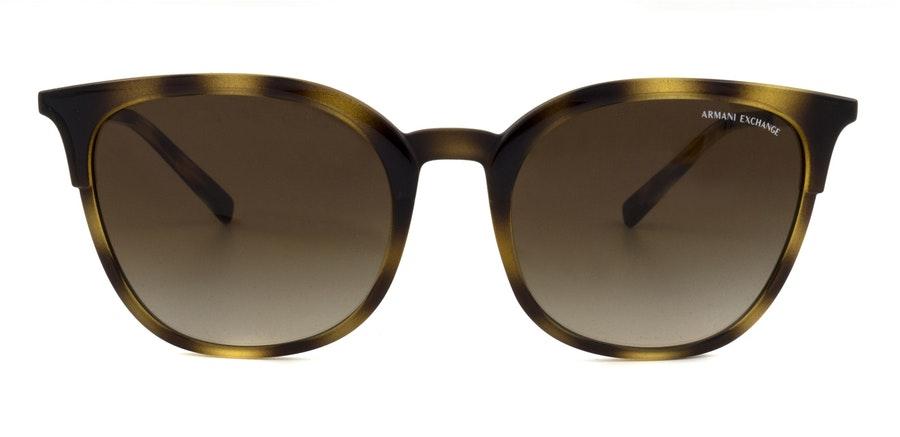 Armani Exchange AX 4091S Women's Sunglasses Brown / Tortoise Shell
