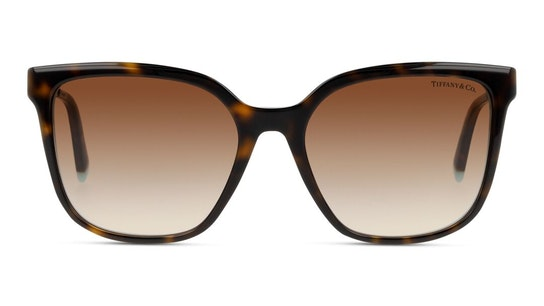 TF 4165 Women's Sunglasses Brown / Tortoise Shell