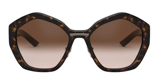 PR 08XS Women's Sunglasses Brown / Brown