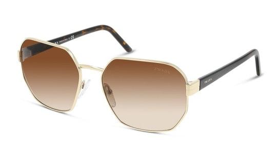 PR 54XS Women's Sunglasses Brown / Gold