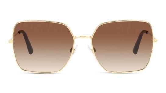 DG 2242 (41306) Sunglasses Brown / Gold