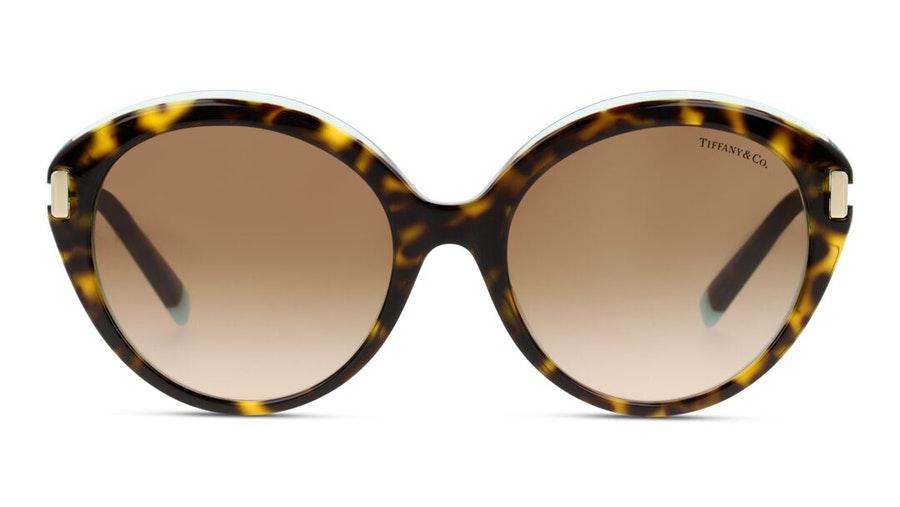 Tiffany & Co TF 4167 Women's Sunglasses Brown / Havana
