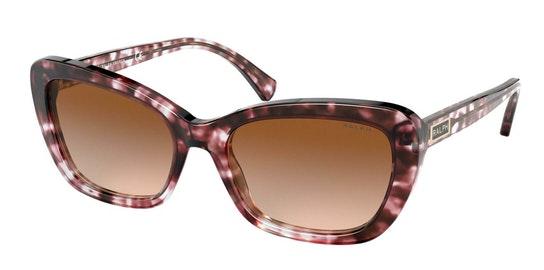 RA 5264 Women's Sunglasses Brown / Brown